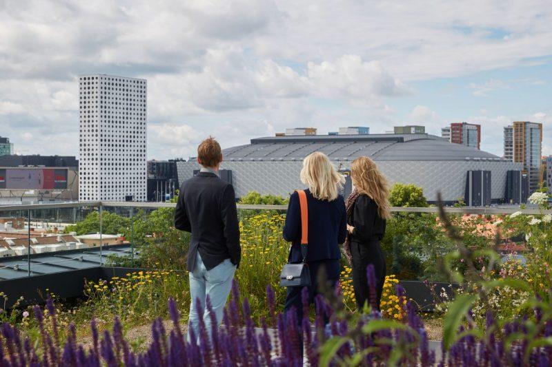 Tre personer står på en takterass och blickar ut över staden.